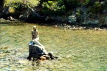 12 route okluk koyu girisinde denizkizi heykeli